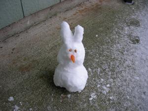 Snowbunny_1